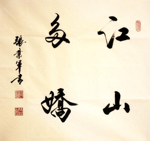 张业军:胸怀家国情_浓墨写人生